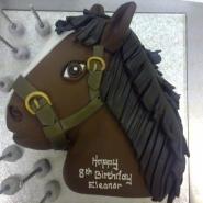 horses_head_2d.jpg