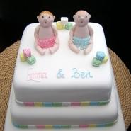 cute_baby_twins_cake.jpg