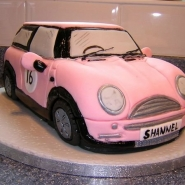 pink_mini3__640x480_.jpg